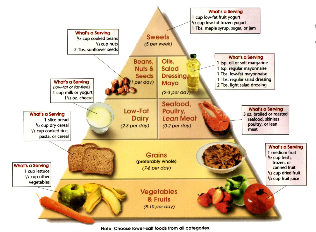 What Is The Best Protein Food For Losing Weight